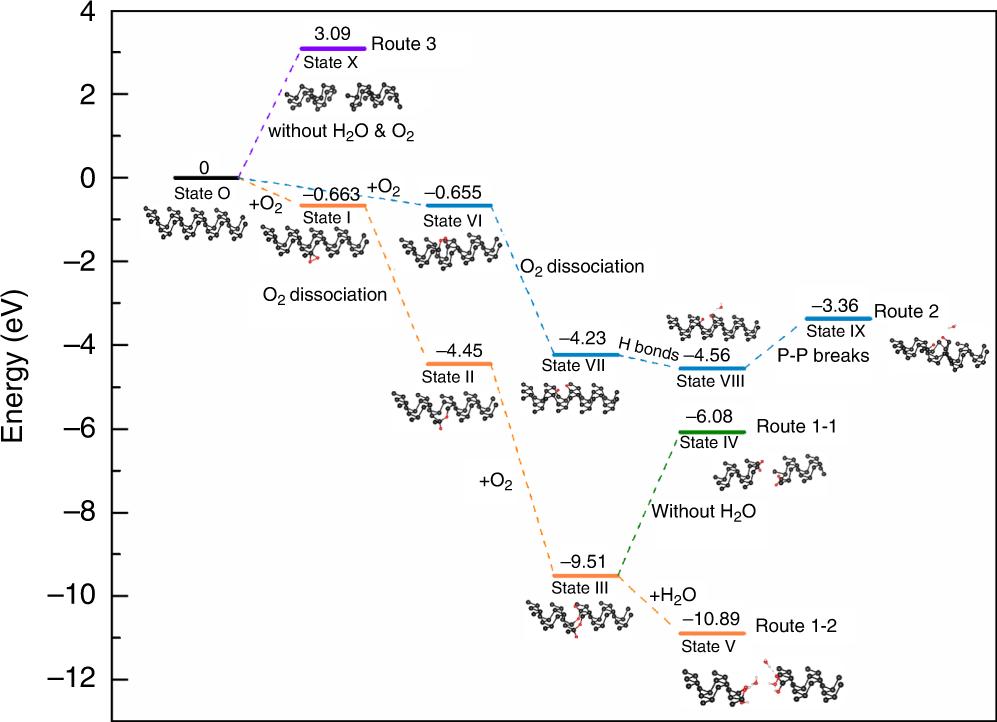 图3  氧驱动解离块体黑磷反应机理的理论计算